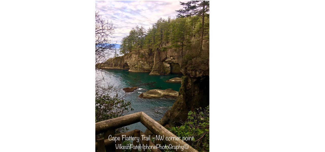 cape-flattery-trail